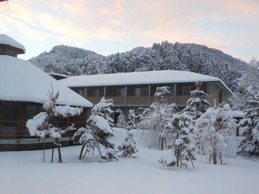 今年の雪.jpg