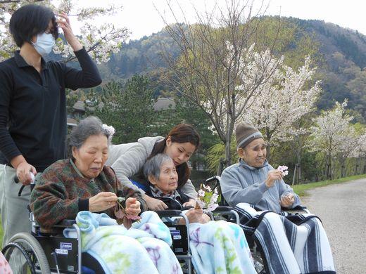 桜公園.jpg